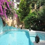 Photo of Riad Norma