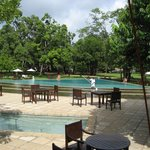 The swimming pool and poolside area.
