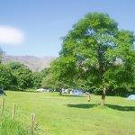 sunny langdale campsite