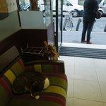 Cat sleeping, unobtrusively