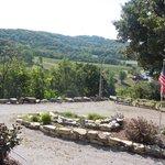 Harvest Season Overlooking the Vineyard (Vidal Suite)