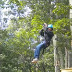 Tree Top Adventure zip line
