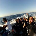 Speadboat Trip to Gordon Reef