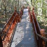 New boardwalk trail