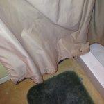 Moldy shower curtain