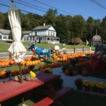 Fall goodies at the Apple Barn