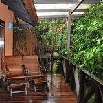 Rainforest View Deck