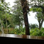 View from our restaurant table