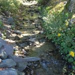 Creek near Country Store