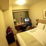 Standard Queen sized room
