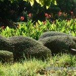 Le parc de la paloma..Bénalmadéna