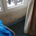 Skimmelsvamp i værelset