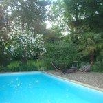 Jardim - piscina
