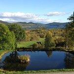 Utsikten fra Grønolens spisesal og entre.