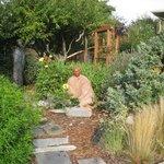 Shore garden