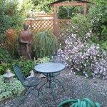 Garden outside the garden room