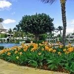 Sugar Beach gardens/pool area