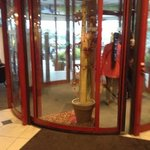 Auto revolving entrance door