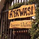 Ayawasi Organico y Natural