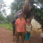 Primo piano con l'elefante