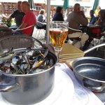 Belgium Mussels