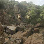 The Rift Valley wall beside our Lake Manyara camp - we climbed up them! (w/ kids)
