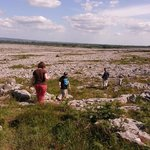 On the Burren with Tony Kirby, 9 July 2013