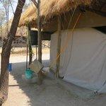 The safari shower water source