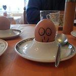 Friendly face for breakfast!