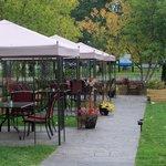 Best patio/terrace ever !