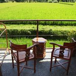 View from sawah balcony