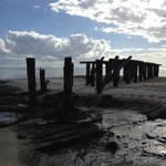 Long forgotten wharf from logging days