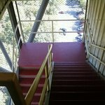 The stairs up