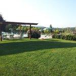 Giardino zona piscina