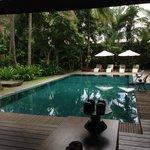 I love this pool!