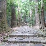 大門坂から那智大社へ行く道中