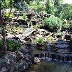 Waterfalls by Restaurant