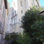Palais des papes and tree in garden