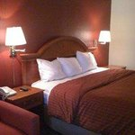 Country Hearth Inn & Suites Gainesville Foto
