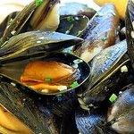 fresh Mussels