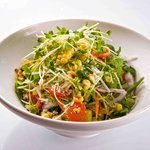 Truly healthy fresh vegetable salad