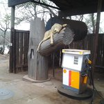 marloth park petrol station