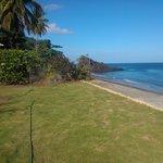 Lawn & beach back drop