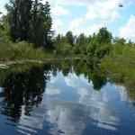 Cedar Hammock Canoe Trail