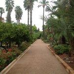 les jardins de la mamounia