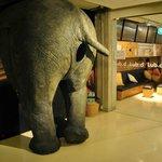 elephant at the door