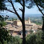 <3 Gimignano - hilltop view