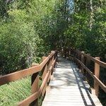 Bridge to a second beach area.