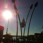 Escultura de tulipanes en Bastion Square