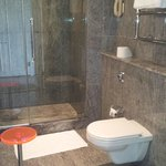 Well tiled and very clean toilet. Great water pressure.